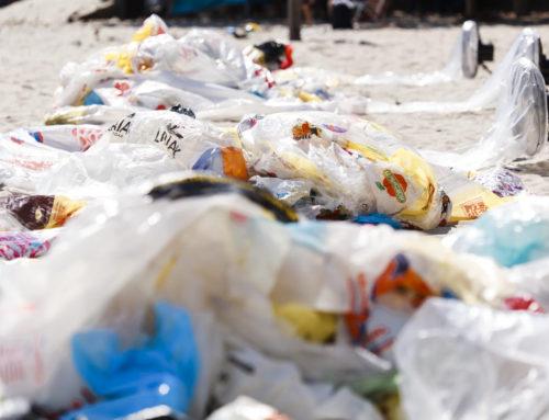 ODS12: Arte contra el despilfarro